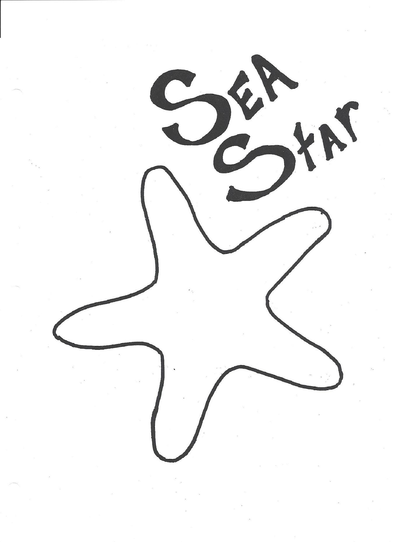 sea star bean bag the adventures of ellie and edmond