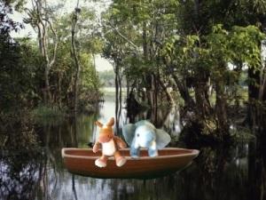 e & e river boat