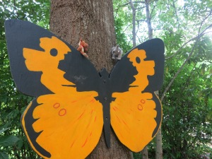 We found a giant butterfly!
