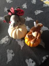 e e pumpkin