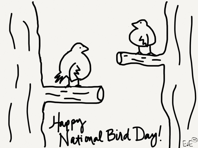 bird day coloring sheet