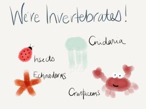 invertebrate cartoon