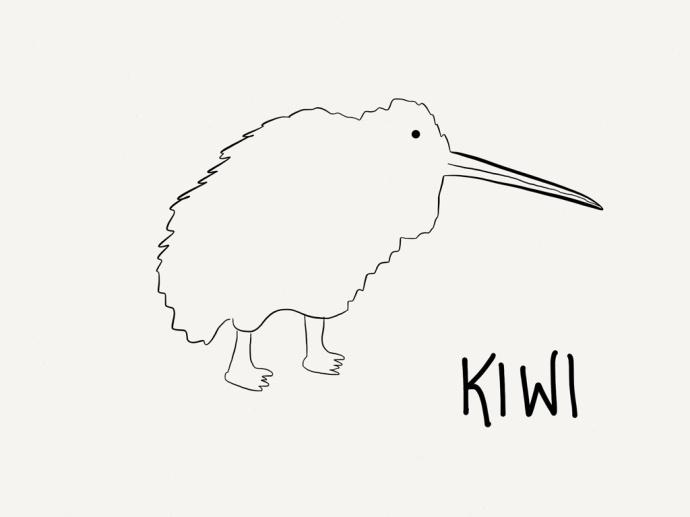kiwi coloring