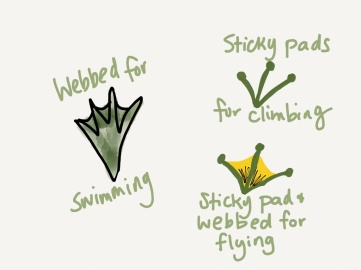 Frogs have different kinds of feet to help them adapt to their habitats!