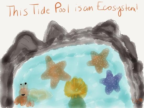 ecosystem cartoon