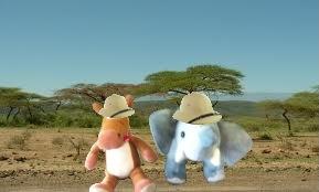 e e savanna