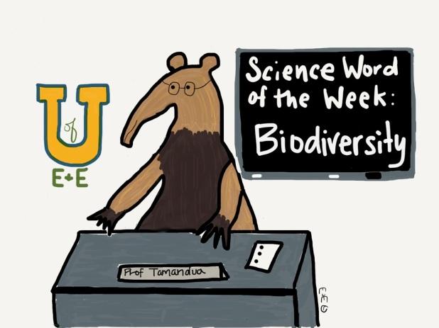 swow biodiversity