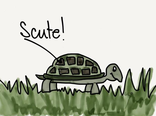 swow scute cartoon