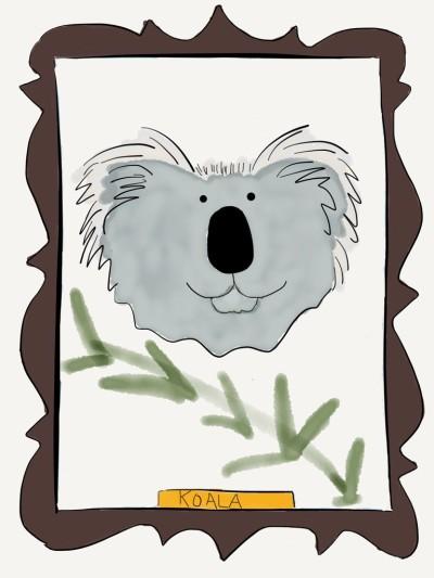 koala wearefanimaly