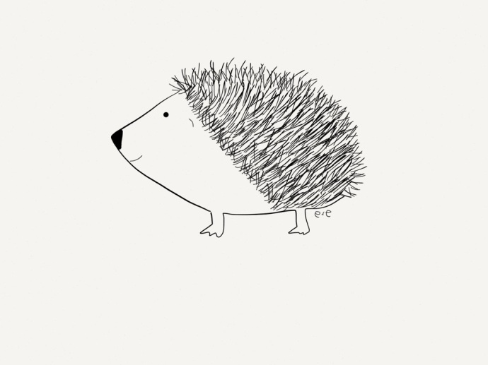 hedgie color