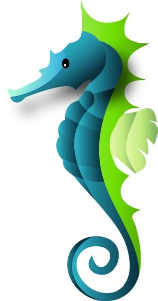 ellie_edmund_professors-seahorse(1)