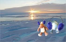 e e arctic
