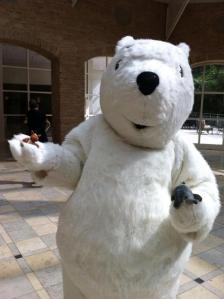 e & e polar bear