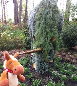 We horses and unicorns (ok they aren't real) :)... have jaws that move sideways to help us chew plant material better!