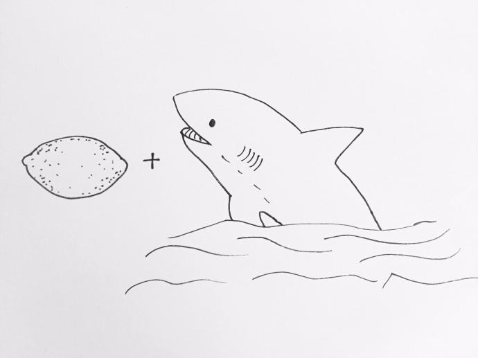 Shark B!