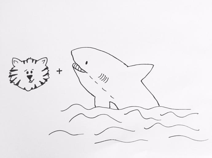 Shark C!